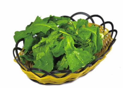 春天要多吃这4种养生菜 豆芽润燥、莴笋抗过敏 - 采菊翁 - lzr486的博客