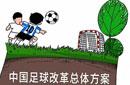韩媒评中国足球改革:过于狂热或边缘化其他项目