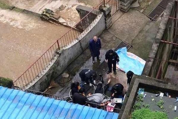 江西宜春动物园老虎咬死工作人员