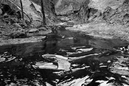 中石油长庆油田发生原油泄漏 数百米山沟变油河