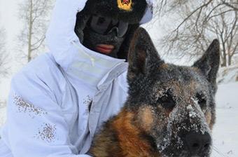 边防兵雪中巡边用胸膛温暖军犬