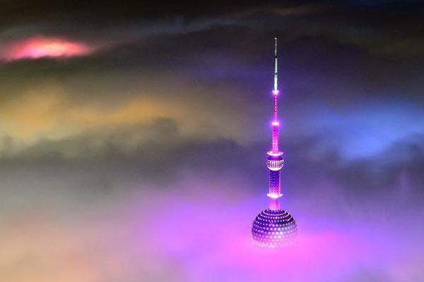 大雾笼罩上海造奇景:仿佛置身仙境