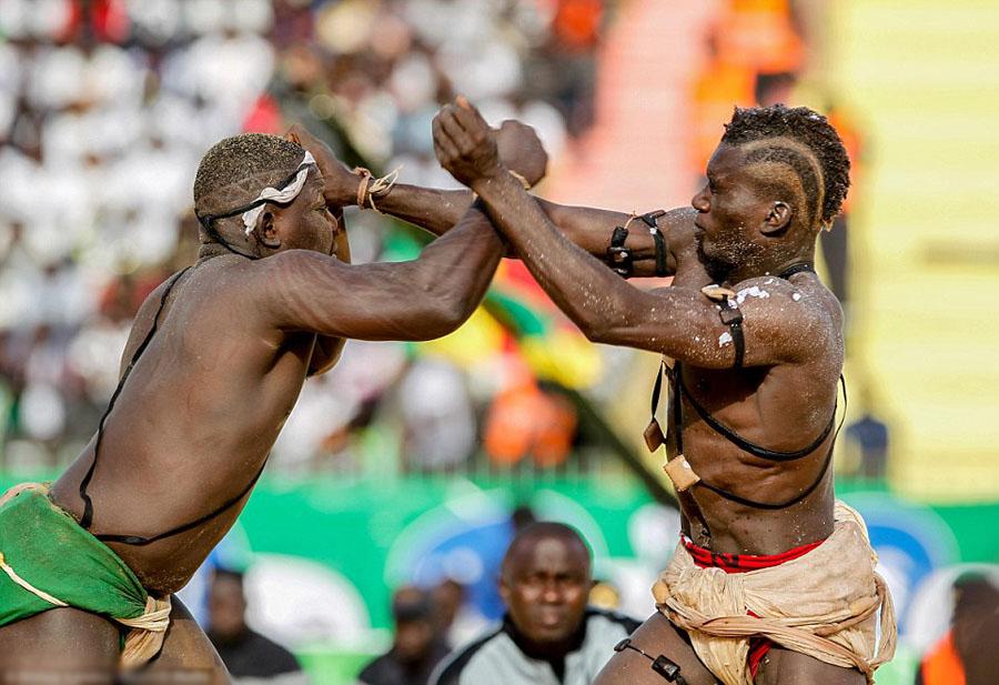 塞内加尔摔跤大赛 顶级对搏引围观