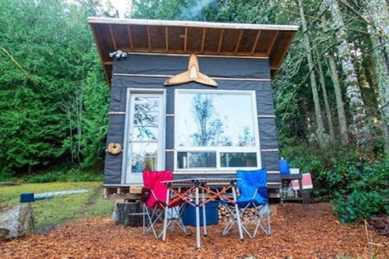 仅500美元 你能拥有一栋回收材料制成的房子
