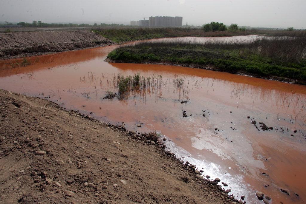 陕西宝鸡:渭河岐山段污水直排河道 河水变红如血河