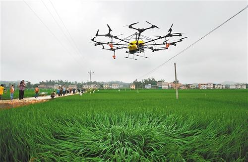 无人机何时飞入农家田?价格高续航弱缺标准
