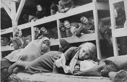 惨不忍睹 纳粹集中营里的女人们