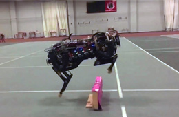 """美国""""大狗""""机器人连续跳跃障碍"""