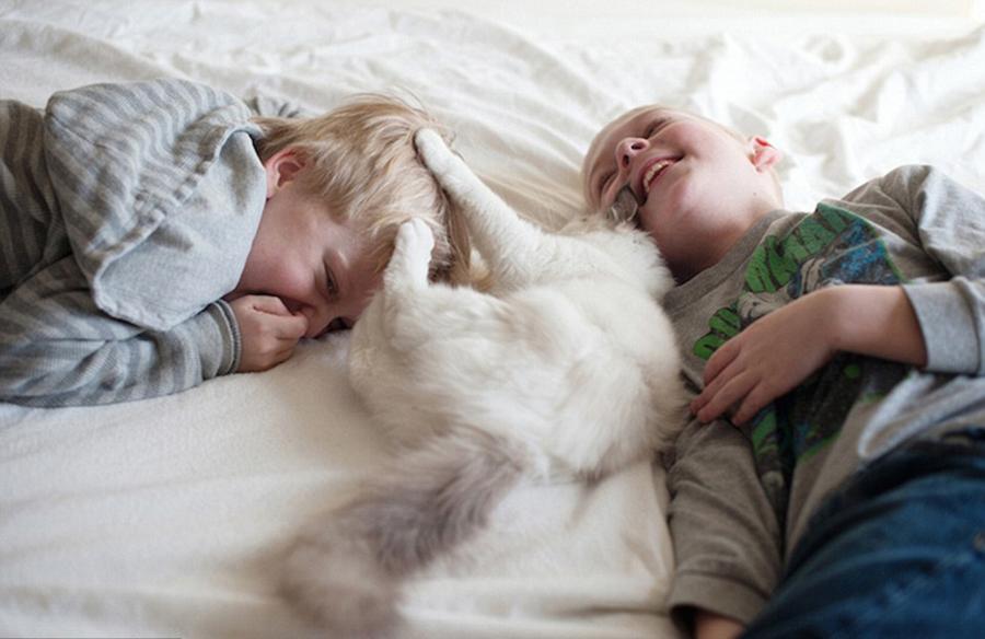美摄影师拍儿子与宠物猫的有爱时刻