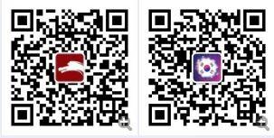 韩媒:动物界视力大PK 鸵鸟力压老鹰摘桂冠
