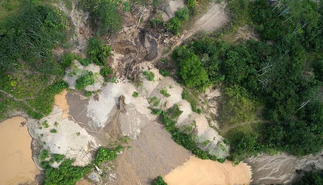 无人机又有新用途:保护亚马逊雨林生态环境