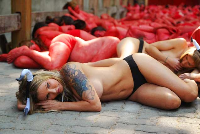 环球图片一周精选 动物保护者裸身抗议奔牛节