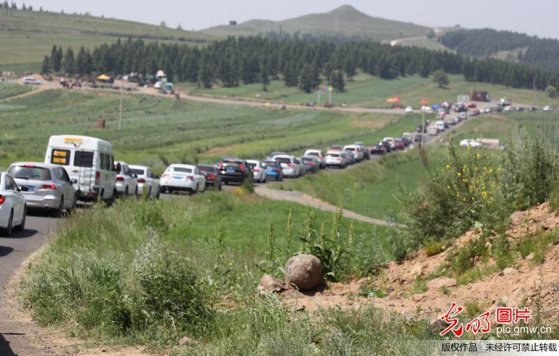 中国版66号公路遭遇行路难