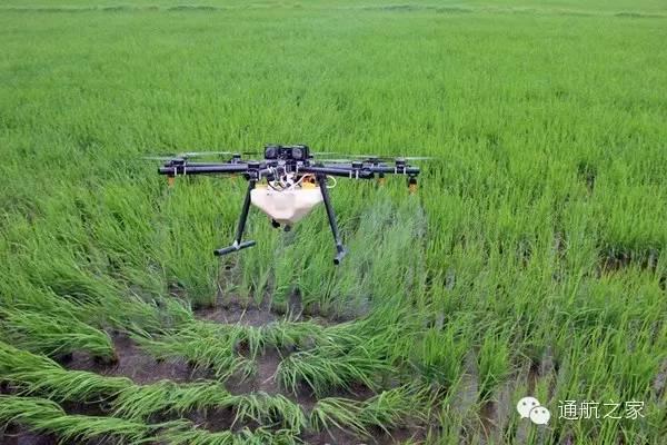 四川无人机委员会:无人机在现代农业很重要