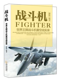 世界王牌战斗机暨空战实录