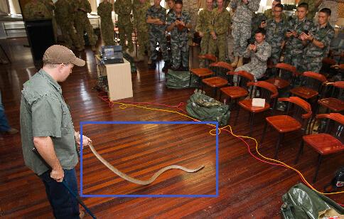 澳军高手为解放军表演耍大蛇