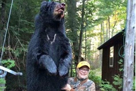 美七旬丧偶老太成功捕杀200斤重黑熊
