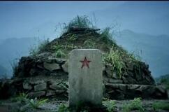 《忠义老兵》公益广告走红:每年都来看你!