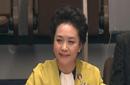 彭丽媛联合国英文演讲