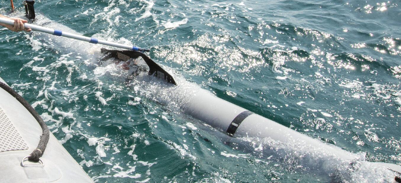 美军在波斯湾捞起神秘装置?