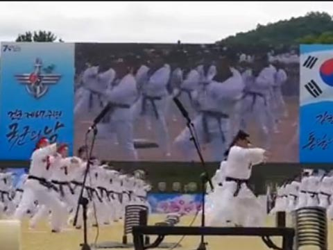 韩国女特种兵秀高超跆拳道 手刀劈十层瓦砖