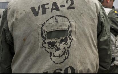 近距离看太平洋美军舰载机中队邪恶标徽