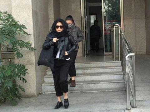 张铁林私生女案开庭 承认张月系亲生女儿