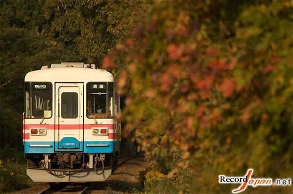 令外国游客感到惊讶的日本十大铁路规则