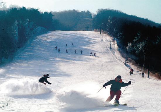 沈阳东北亚滑雪场