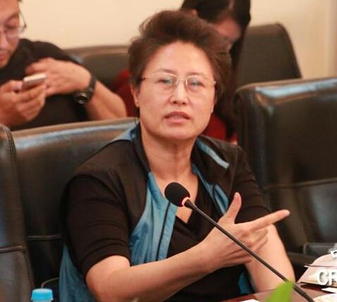 郝叶力:国家创新与发展战略研究会副会长、原