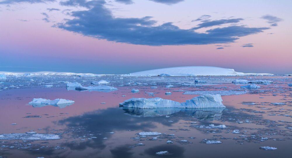 日本无视国际法庭禁令 计划在南极洲恢复捕鲸业