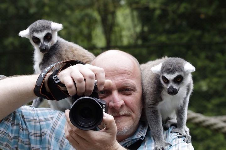 野生动物陪伴摄影师工作逗趣萌照