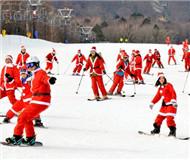 """日本""""圣诞老人""""滑雪大游行 畅享节日乐趣(图)"""