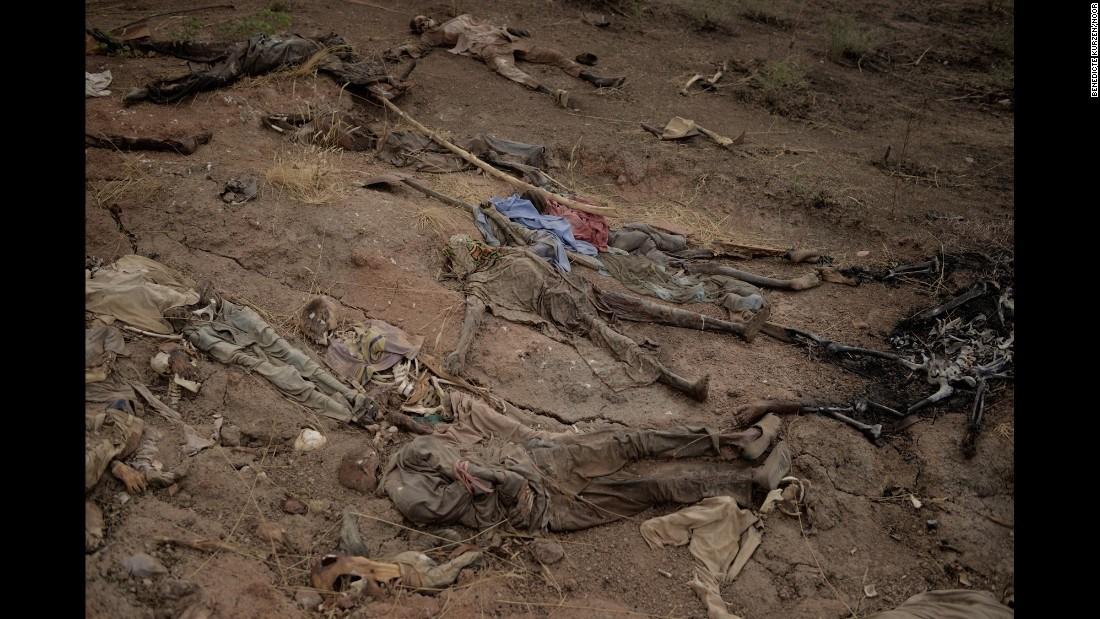 全球年度图片精选!枪口下的生死别