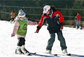 元旦滑雪新手先学几招