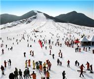 申冬奥成功带火京郊冰雪游 部分雪场雪具供不应求