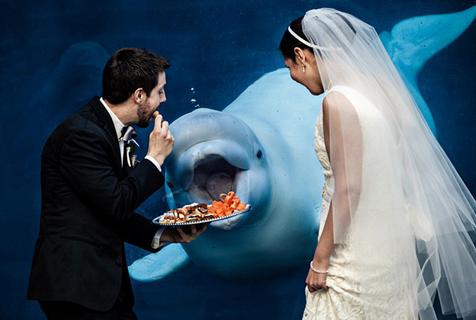 国际摄影协会盘点史上最搞笑婚纱照