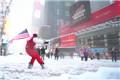 纽约街头可以滑雪