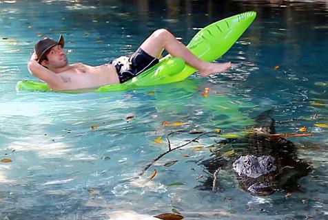 美男子鳄鱼池中悠闲漂流 淡定自若