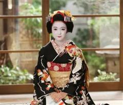 论日本艺妓的教养 远不是你想的那样