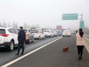 江苏因大雾封闭高速公路 行人下车遛狗