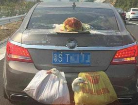 轿车带着鸡鸭跑高速 画面喜感引关注