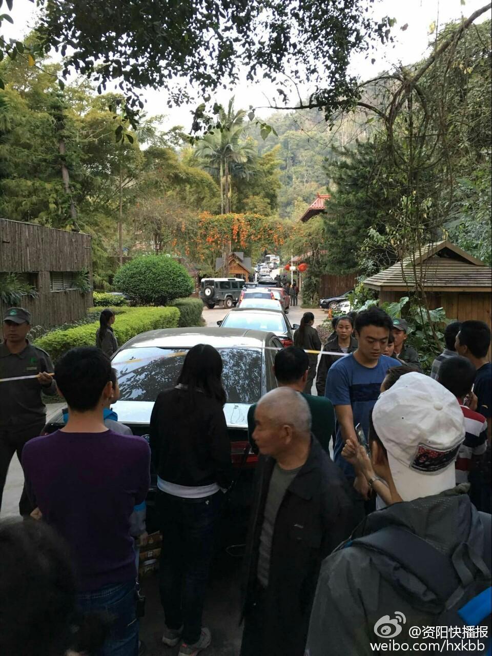 西双版纳野象又上公路玩 有四川游客车辆被困