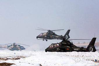 节后陆航多型武直大编队训练