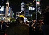 最令人失望的东京景点 忠犬八公排名第一