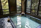 东京旅游温泉之旅:蛇汤温泉TAKARA荘