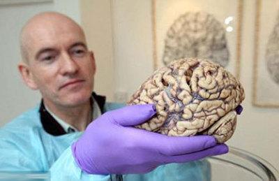 研究表明:人脑功能随季节变化存差异