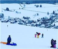 德国滑雪圣地绍因斯兰 黑森林中的美丽景色(图)