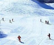 日本皇族滑雪赛现场传出爆炸声 嫌犯被捕无人伤