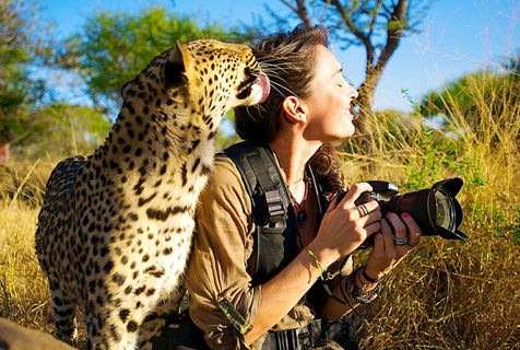 """南非摄影师与动物上演真实版""""美女与野兽"""""""